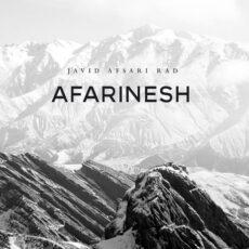 Javid Afsari Rad Afarinesh