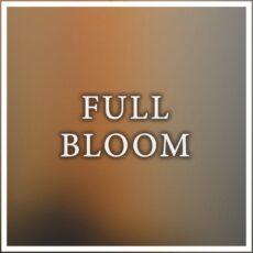 Maneli Jamal Full Bloom