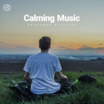 Calming Music (Playlist By SONGSARA.NET)