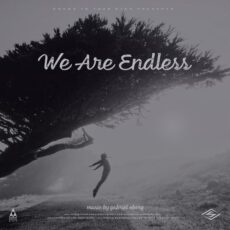 Songs To Your Eyes We Are Endless