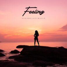 AShamaluevMusic Feeling