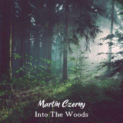 Martin Czerny Into the Woods
