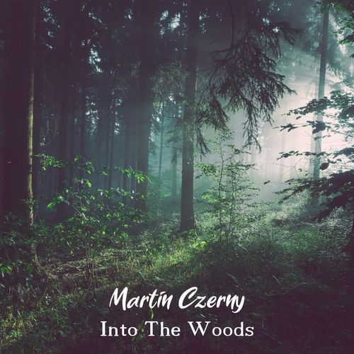 Martin Czerny Into the Woods