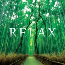Various Artists Relax