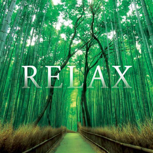 Various Artists Relax