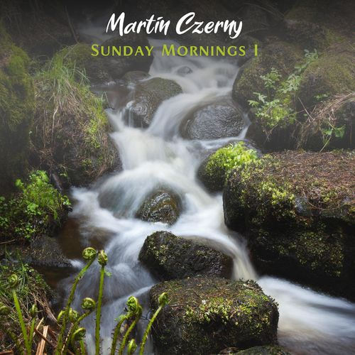 Martin Czerny Sunday Mornings I