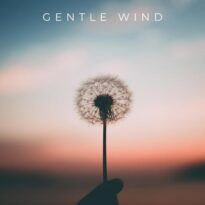 Morninglightmusic Gentle Wind