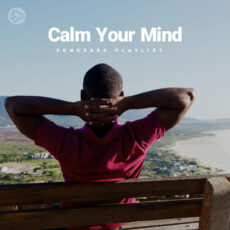Calm Your Mind (Playlist By SONGSARA.NET)