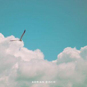 Adrian Disch Intrinsic