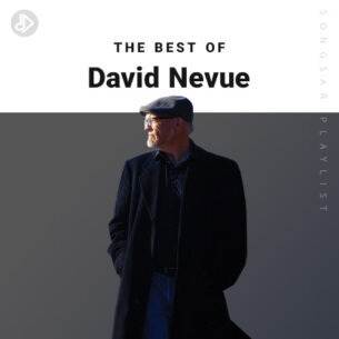 The Best Of David Nevue (Playlist)