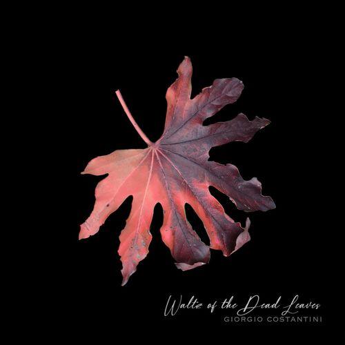 Giorgio Costantini Waltz of the Dead Leaves (432 Version)