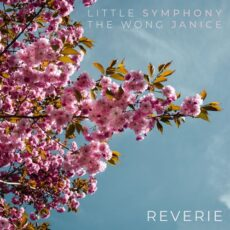 Little Symphony Reverie