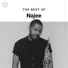 The Best Of Najee (Playlist)