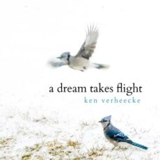 Ken Verheecke A Dream Takes Flight