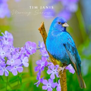 Tim Janis Morning Sunrise, Vol. I