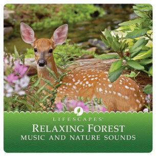Attila Fias Relaxing Forest