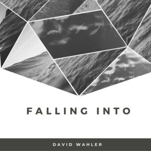 David Wahler Falling Into