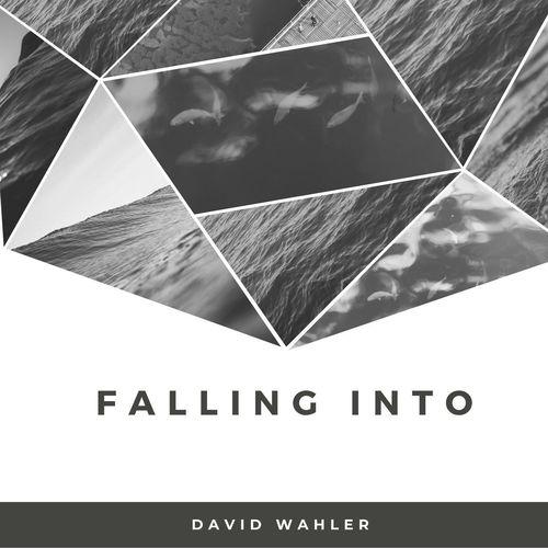 David Wahler Falling Into