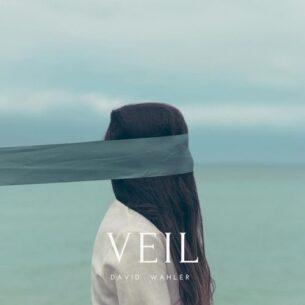 David Wahler Veil