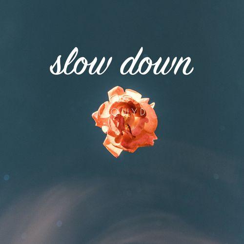LiQWYD Slow Down