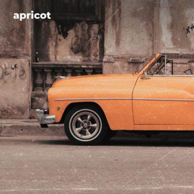 Morninglightmusic Apricot