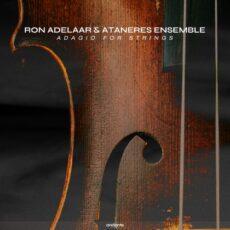 Ron Adelaar Adagio For Strings