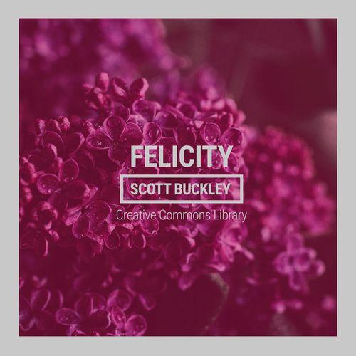Scott Buckley Felicity
