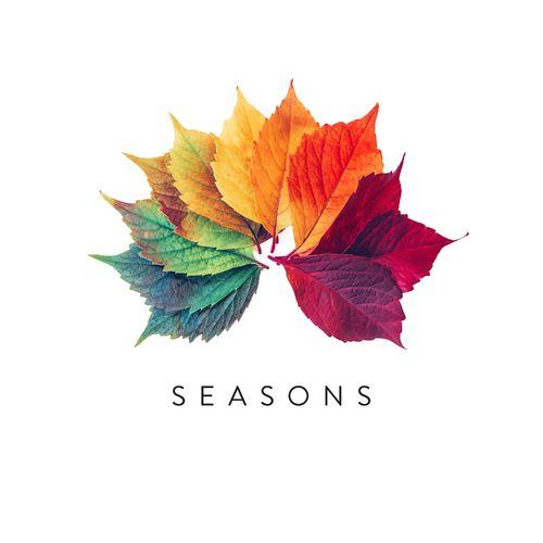 Simon Wester Seasons