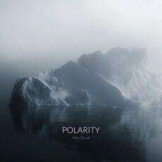 Arttu Silvast Polarity