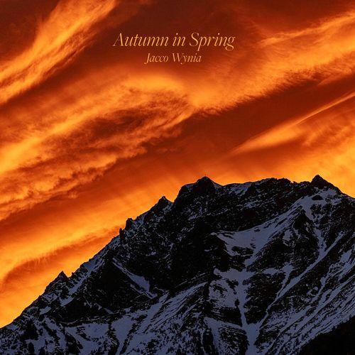 Jacco Wynia Autumn in Spring