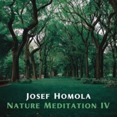 Josef Homola Nature Meditation IV