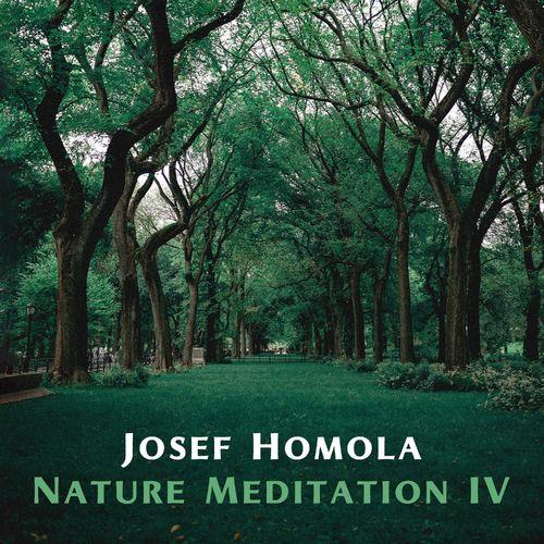 Josef Homola Nature Meditation IV