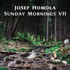 Josef Homola Sunday Mornings VII
