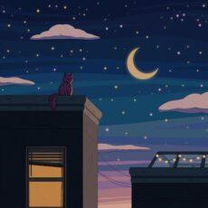 Purrple Cat City Nights