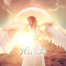 Sybrid Wings