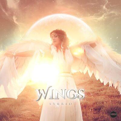 Sybrid Wings