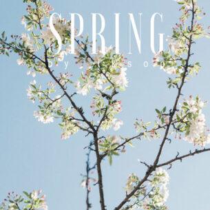 Ikson Spring