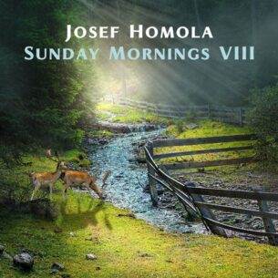 Josef Homola Sunday Mornings VIII