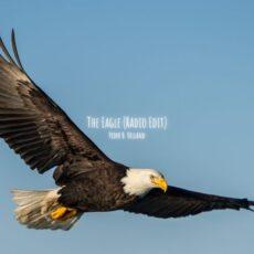 Peder B. Helland The Eagle (Radio Edit)