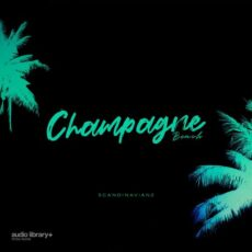 Scandinavianz Champagne Beach