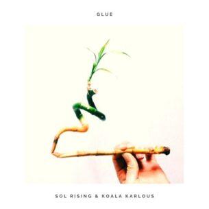 Sol Rising Glue