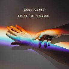 Chris Palmer Enjoy The Silence