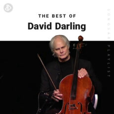 The Best Of David Darling