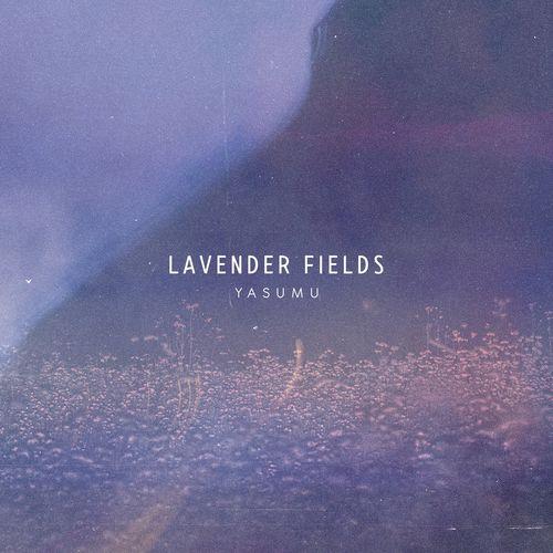 Yasumu Lavender Fields