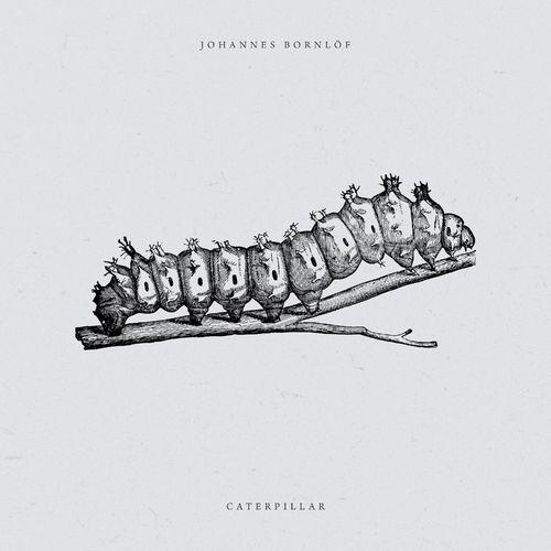 Johannes Bornlof Caterpillar