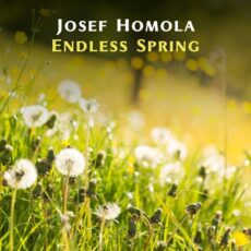 Josef Homola Endless Spring