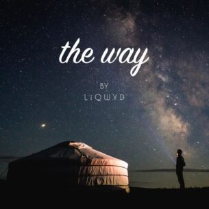LiQWYD The way