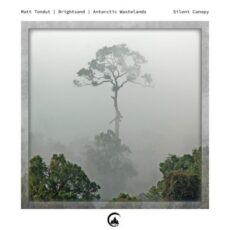 Matt Tondut Silent Canopy