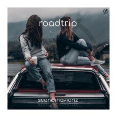 Scandinavianz Roadtrip