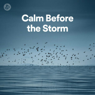 Calm Before the Storm (Playlist)